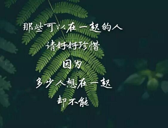 珍惜彼此感情的句子_珍惜美好生活的句子_表达珍惜爱情的句子