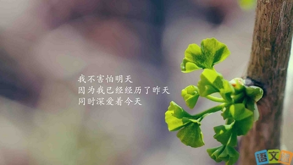 现实扎心语录_九州缥缈录姬野的感情_现实感情扎心语录